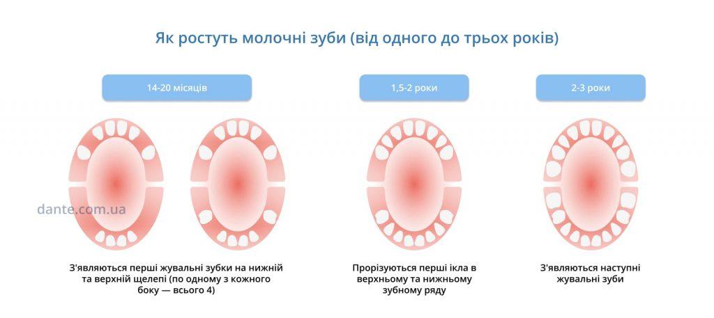 Як ростуть молочні зуби у дитини 2-3 роки