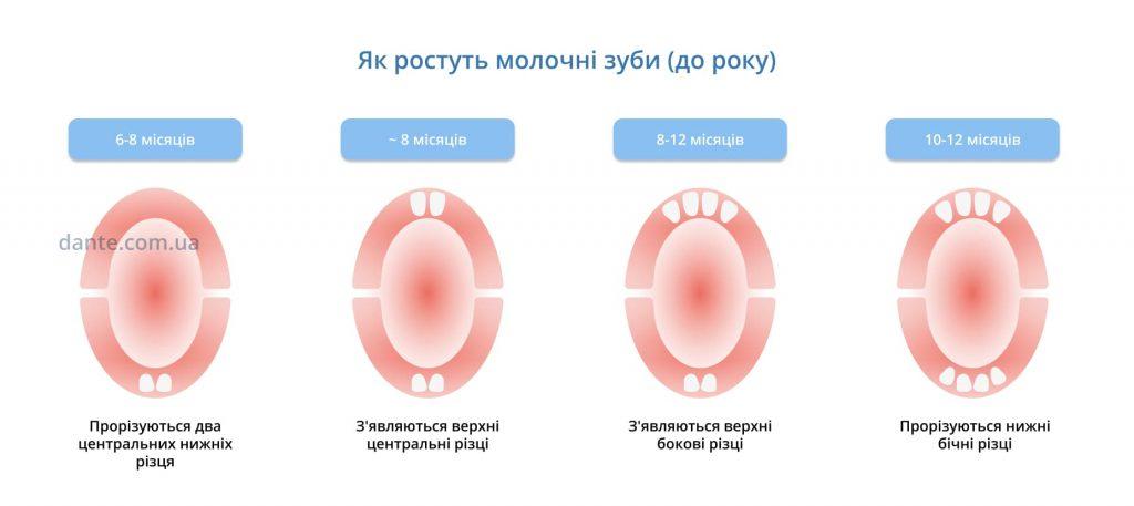 Як ростуть молочні зуби у дитини